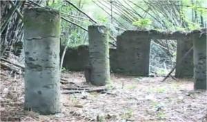 Bimbia, le point de départ :Un site historique perdu dans la broussaille bimbia1-300x176